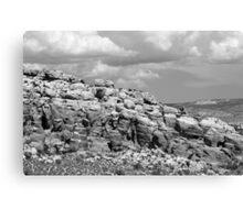 Salt Valley 4 Arches National Park BW Canvas Print