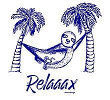 Sloth Relax Photographic Print