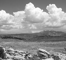 Salt Valley Overlook with La Sal Mountains BW by marybedy