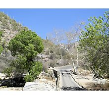 Sabino Canyon Road Photographic Print