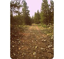 Old Trail Photographic Print