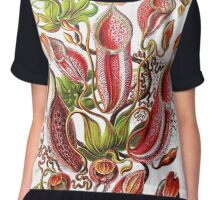 Plants & Animals, carnivorous, pitcher plants, tropical, Nepenthes, psychedelic, art, illustration, haeckel,  Chiffon Top