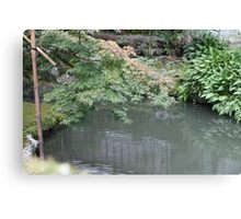 Maple on a pond Canvas Print