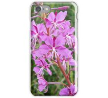 Pink Flower Stalk iPhone Case/Skin