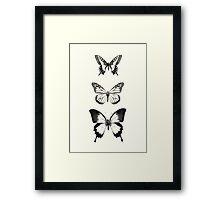 Butterflies // Align Framed Print