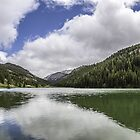 Lake In The Mountains by Thomas Young