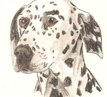 Dalmatian Drawing by Equinspire