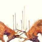 Stags // Strong by Amy Hamilton