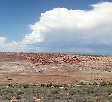 Panorama View Arches National Park by marybedy