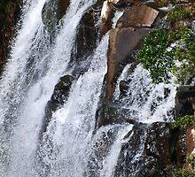 Falls Springbrook  by Virginia McGowan