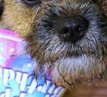 Birthdays are merrier... Sticker