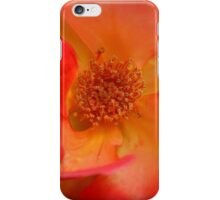 Macro Rose iPhone Case/Skin