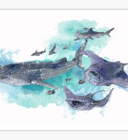 Star Sharks and Rays Sticker