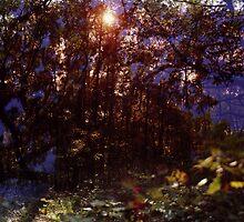 der Wald #1 by Riebeckite