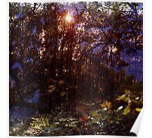 der Wald #1 Poster