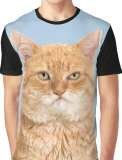 Grumpy looking red tabby cat on blue background Graphic T-Shirt
