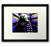 Bindlestiff Framed Print