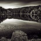A calm evening at the lake by Delfino
