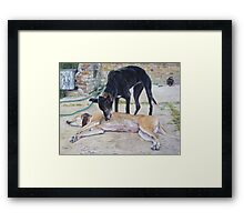 greyhound dogs scenic landscape realist art   Framed Print