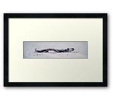 Sago No. 32 Framed Print