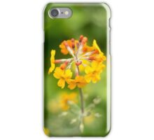 Golden Flowers iPhone Case/Skin