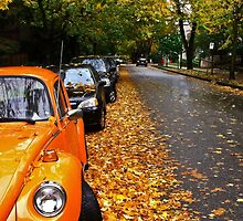 A Beautiful Autumn Day in the West End of Vancouver by mspixvancouver
