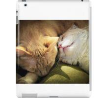 Sleeping Beauties iPad Case/Skin