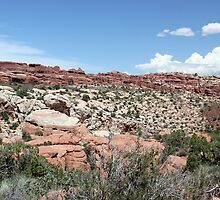 Salt Valley 2 Arches National Park by marybedy