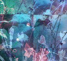 Secret Garden by Stephanie Rachel Seely