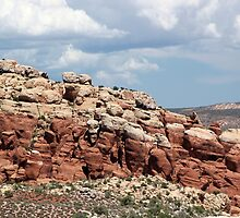 Salt Valley 4 Arches National Park by marybedy