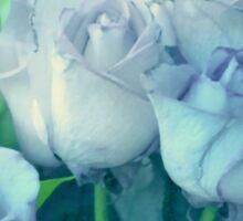 Soft Blue Roses Sticker