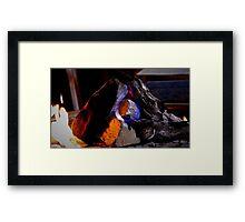 Sago No. 23 Framed Print