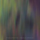 Bruised Light by Stephanie Rachel Seely