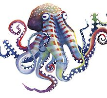 Octopus by SamNagel