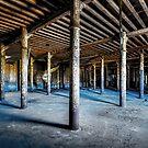 Abandoned Factory by Svetlana Sewell