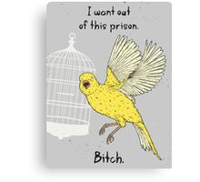 Angry Canary Canvas Print