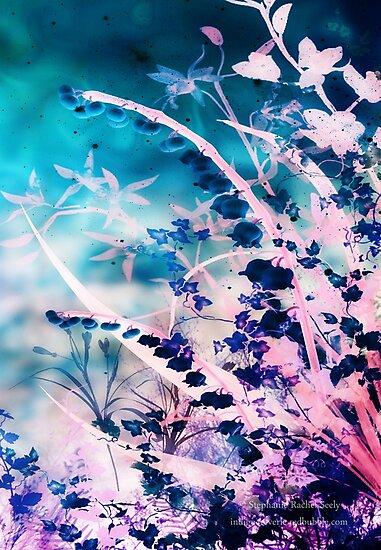 Efflorescence by Stephanie Rachel Seely