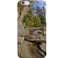 Larabee State Park on Chuckanut Drive iPhone Case/Skin