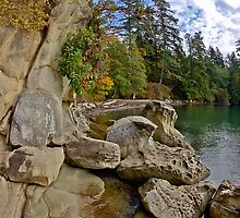 Larabee State Park on Chuckanut Drive by mspixvancouver