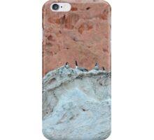 The Wierdest Roost iPhone Case/Skin