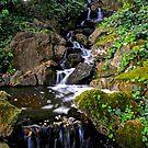 Tumbling Waters by Barbara  Brown