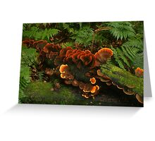 Ginger fungi Greeting Card