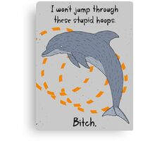 Angry Dolphin Canvas Print