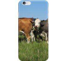 Minchinhampton cows iPhone Case/Skin