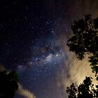 Milky Way by Jennie Gardiner