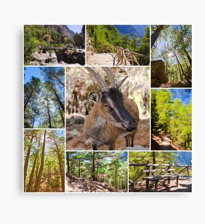 Photo collage of Samaria Gorge images in central Crete, Greece Canvas Print