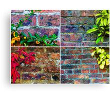 Photo collage of stone wall backgrounds with ivy leaves Canvas Print