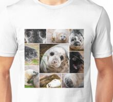 Photo collage of baby seals images Unisex T-Shirt