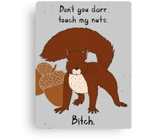 Angry Squirrel Canvas Print
