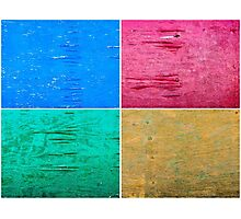 Photo collage of grunge wood painted texture backgrounds Photographic Print